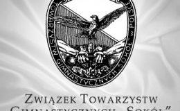 """Sprawozdanie roczne TG """"Sokół"""" w Lesznie"""